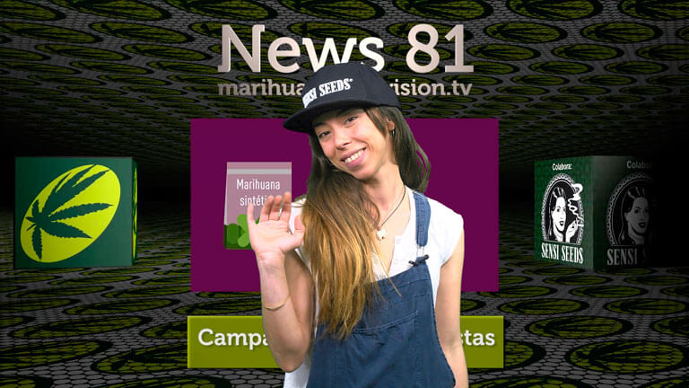 Ya está publicado el Marihuana News 81. ¡No olvides acudir a la charla en Spannabis sobre televisiones cannábicas 2.0.