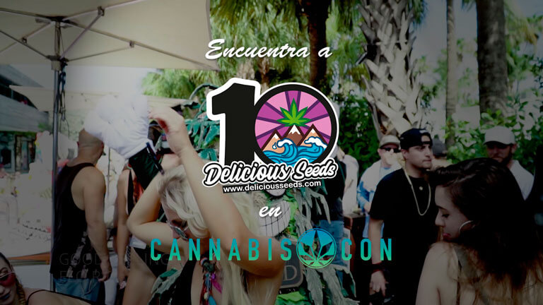Delicious Seeds en Cannabis Con 2019 en Miami