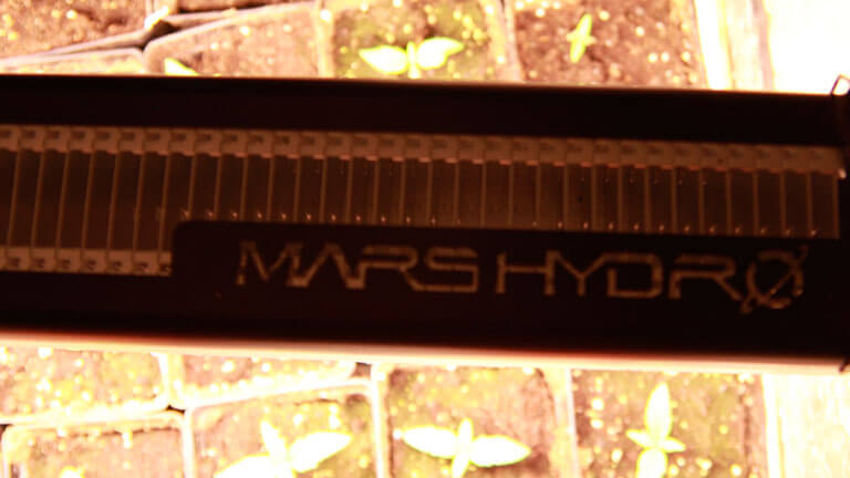 Foco Led Full Spectrum de 250 w de Mars Hydro