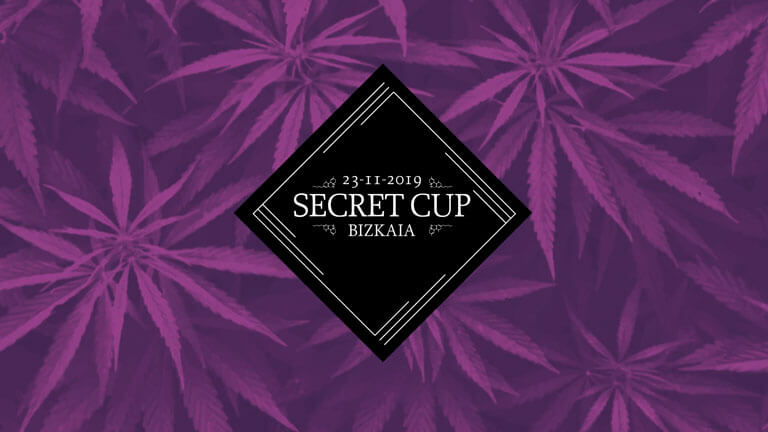Secret Cup en Marihuana Now 100 - Review de Kava