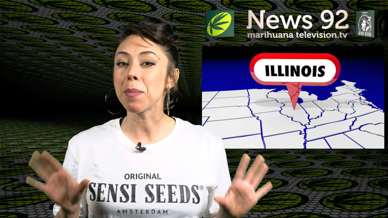 Noticias internacionales en Marihuana News - Emergencia cannábica